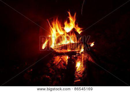 Night bonfire