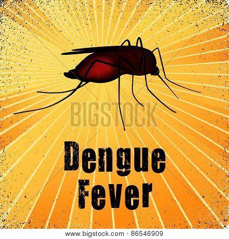 Dengue Fever, Mosquito