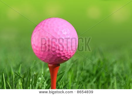 Golf Ball On A Green Grass