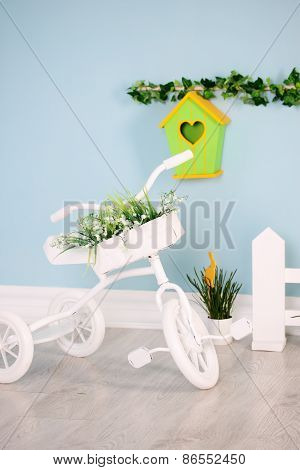 Bicycle Tricycle