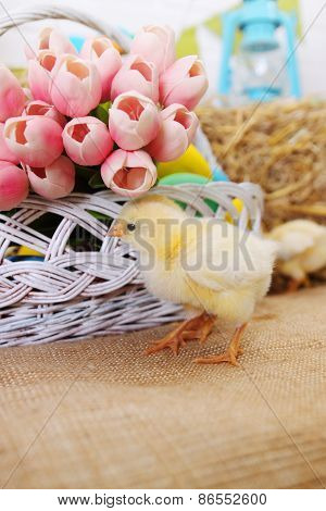 Bouquet Of Tulips And Chicken