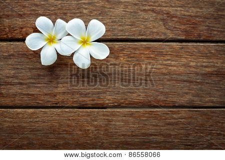 White frangipani on wooden background, spa background  with lot of copy space for text