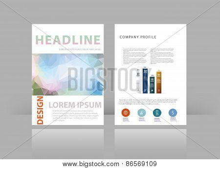 Triangle Design Vector Template Layout For Magazine Brochure Flyer Booklet Cover Annual Report