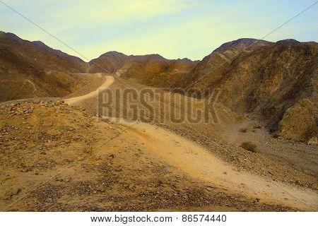 Israeli Desert.