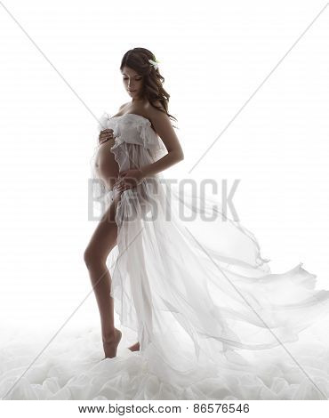 Pregnant Woman Dress, Pregnancy Maternity Concept, Beautiful Waving Flying Gown