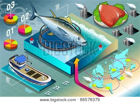 Isometric Infographic Of Tuna Breeding