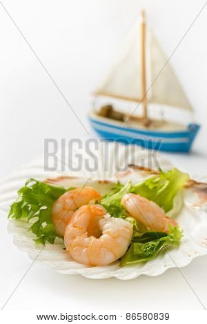 Prawn salad in scallop shells on a white background