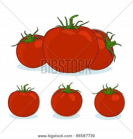 Three Kinds Red Tomato