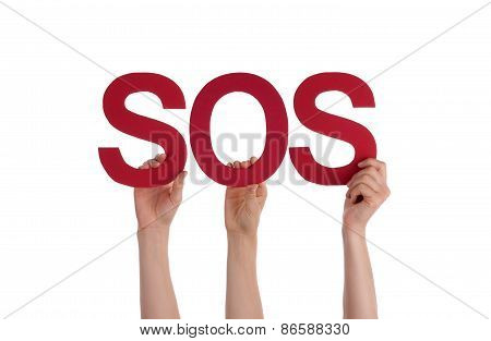 Many People Hands Holding Red Straight Word Sos