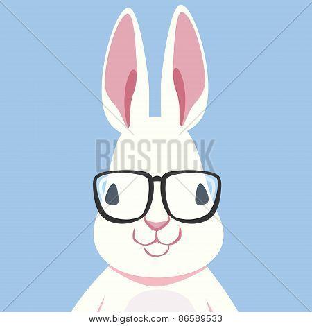 Nerd Rabbit