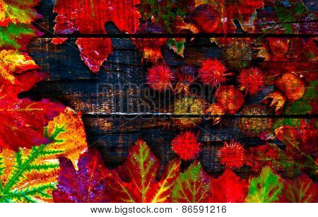 A Digitally Constructed Painting Of Colorful Autumn Leaves And Pods Arranged On Wooden Boards