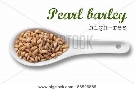 Pearl Barley In White Porcelain Spoon / High Resolution Product Photography Of Seed In White Porcela