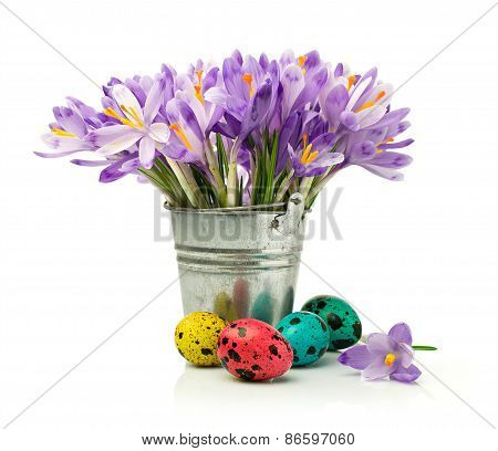 Purple Crocuses And Painted Quail Eggs
