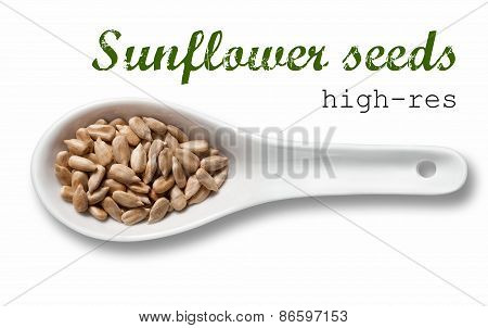 Peeled Sunflower Seeds In White Porcelain Spoon / High Resolution Product Photography Of Seed In Whi