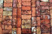 stock photo of garden eden  - Vintage Brick Walkway at Eden Gardens State Park in Florida - JPG