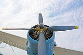 foto of biplane  - The engine and propeller plane AN2 close - JPG