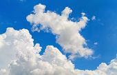 picture of cumulus-clouds  - Blue sky with white cumulus clouds on a clear sunny day - JPG
