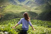 foto of farm landscape  - freedom girl in mountains girl in the mountains in a blue shirt - JPG