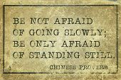 image of proverb  - Be not afraid of going slowly  - JPG