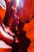 foto of antelope  - Antelope Canyon and Navajo Rock Slot Formation - JPG