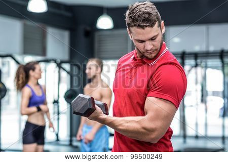 Muscular trainer lifting a dumbbell while looking his biceps