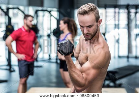 Muscular man lifting a dumbbell while looking at his biceps