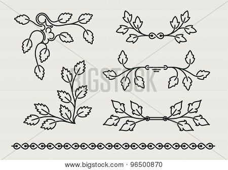 Set Of Six Vector Floral Elements With Leaves In Mono Line Style
