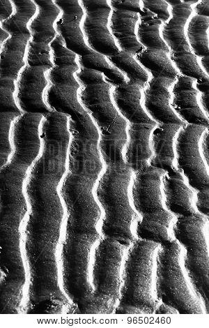 Sand ripples on a beach.