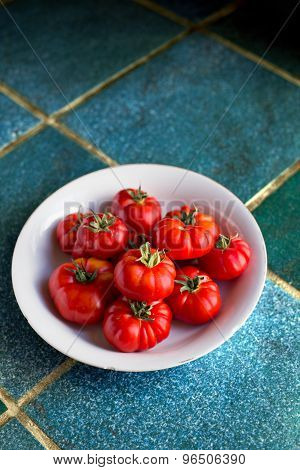 Fresh Organic Mature Tomatoes.