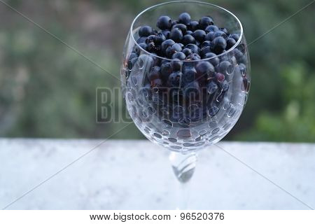 glass of blueberry