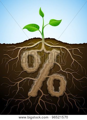 Percent Sign Like Root Of Plant