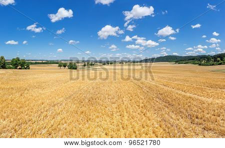 Stubble field in rural landscape