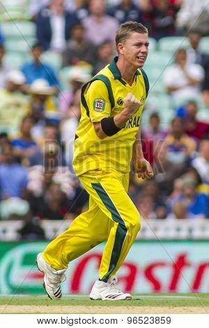 LONDON, ENGLAND - June 17 2013: Australia's Xavier Doherty celebrates taking the wicket of Tillakaratne Dilshan during the ICC Champions Trophy cricket match between Sri Lanka and Australia.
