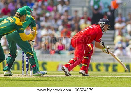LONDON, ENGLAND - June 19 2013: England's Ian Bell during the ICC Champions Trophy semi final match between England and South Africa at The Oval Cricket Ground