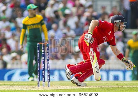 LONDON, ENGLAND - June 19 2013: England's Ian Bell runs a single during the ICC Champions Trophy semi final match between England and South Africa at The Oval Cricket Ground
