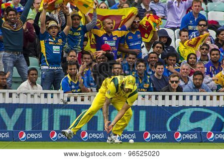 LONDON, ENGLAND - June 17 2013: Australia's Mitchell Johnson fielding during the ICC Champions Trophy international cricket match between Sri Lanka and Australia.