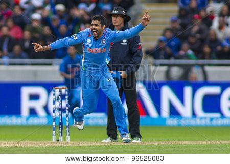 EDGBASTON, ENGLAND - June 23 2013: India's Ravindra Jadeja celebrates a wicket during the ICC Champions Trophy final cricket match between England and India at Edgbaston Cricket Ground