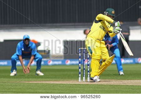 CARDIFF, WALES - June 04 2013: Australia's David Warner during the ICC Champions Trophy warm up match between India and Australia at the Cardiff Wales Stadium on June 04, 2013 in Cardiff, Wales