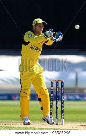 CARDIFF, WALES - June 04 2013: Australia's Matthew Wade (wk) during the ICC Champions Trophy warm up match between India and Australia at the Cardiff Wales Stadium on June 04, 2013 in Cardiff, Wales