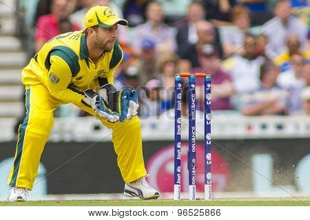 LONDON, ENGLAND - June 17 2013: Australia's Matthew Wade (wk) during the ICC Champions Trophy international cricket match between Sri Lanka and Australia.