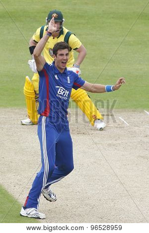 CHESTER LE STREET, ENGLAND. JULY 07 2012: England's Steven Finn, appeals for the wicket pf Australia's David Warner, during the 4th one day international between England and Australia