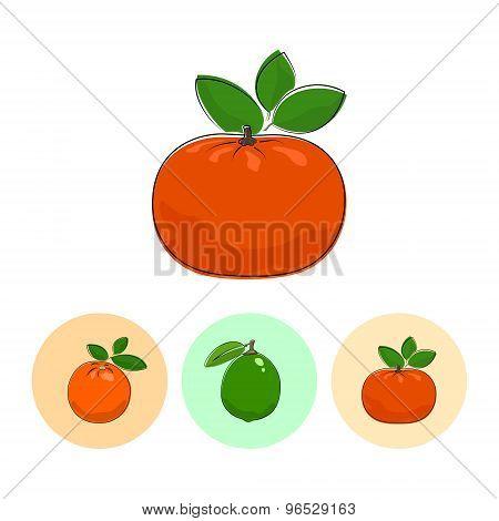 Fruit Icons, Mandarin, Lime , Orange