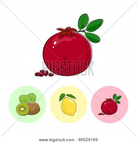 Fruit Icons, Pomegranate ,lemon , Kiwifruit