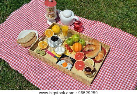Breakfast On A Lawn