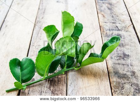 Close Up Kaffir Lime Leaves On Wooden Table
