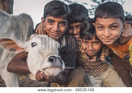 GODWAR REGION, INDIA - 12 FEBRUARY 2015: four boys from Rabari tribe and calf. Loss of tradition gains pace from every new generation. Post-processed with grain, texture and colour effect.