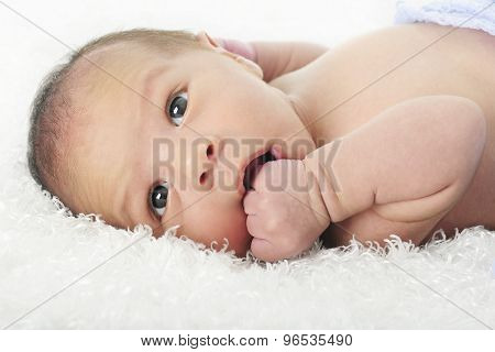 Close-up image of an alert newborn chewing on his fist.  On a white background.
