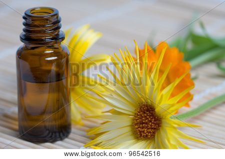 Open Bottle And Calendula Flowers On Bamboo Plate