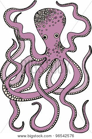 Hand drawn vector octopus illustration. Decorative octopus doodle drawing