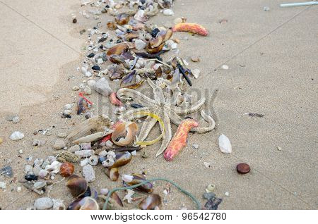Garbage On A Beach, Environmental Pollution
